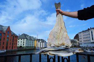 рыбный тур в Норвегию от Uniktur