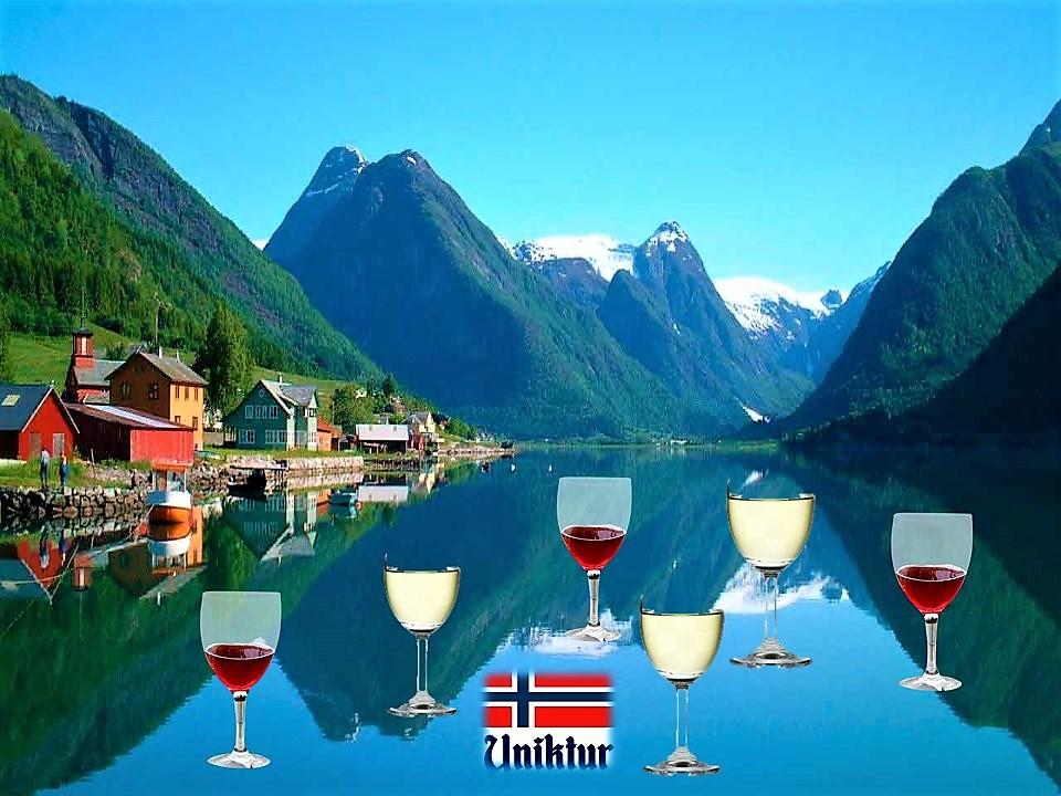 дегустация вина в Норвегии/Uniktur
