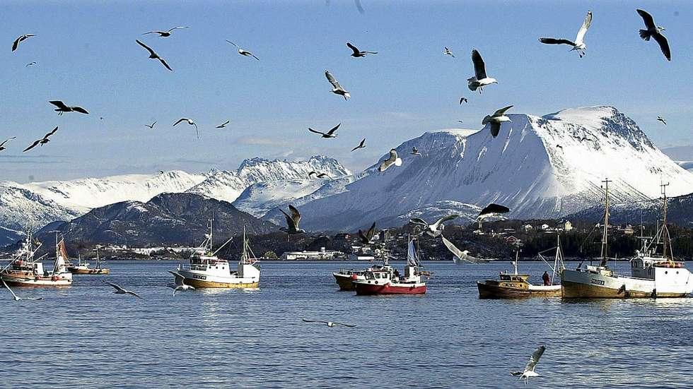 рыбалка в Норвегии от Uniktur