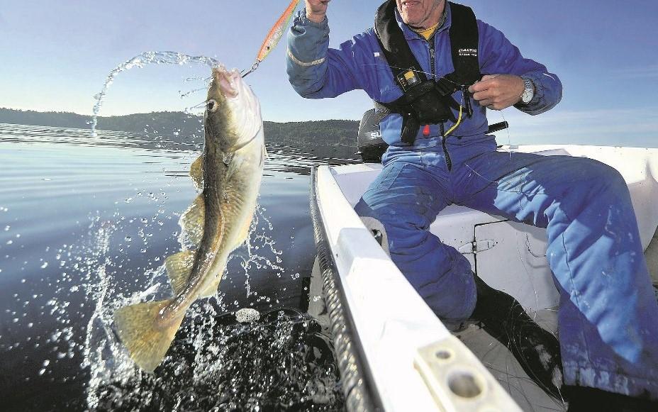 рыбалка трески от Uniktur