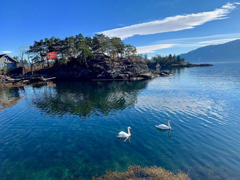 лебеди на фьорде/Uniktur